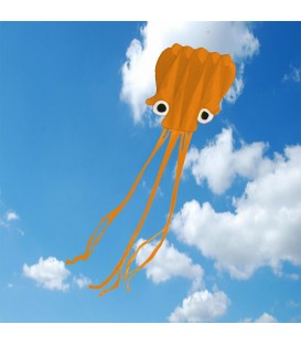5m Orange Octopus Soft Kite